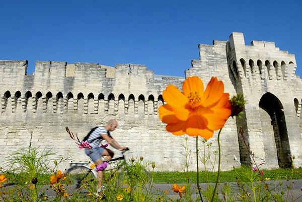 Avignon Tourisme, créateur d'expériences